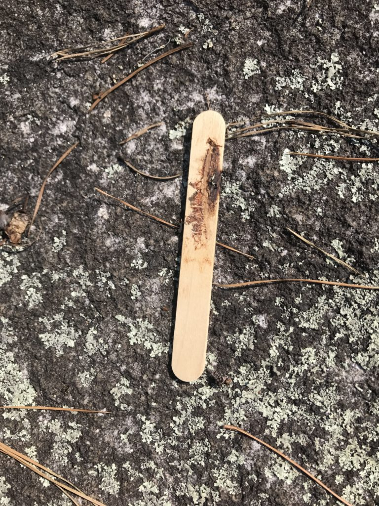 Used popsicle sticks are often dropped on the mountain by thoughtless consumers.